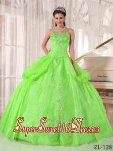 Sweet Sixteen Dress Beadings Organza Spaghetti Straps Spring Green Discount 2014 Ball Gown