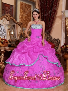 Beautiful Hot Pink Ball Gown Strapless With Organza Appliques And New Style For Sweet 16 Dresses