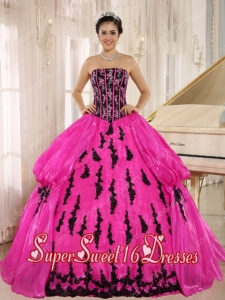 Hot Pink Embroidery Strapless Popular Ball Gown Sweet 16 Dresses