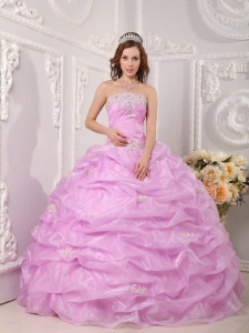 Exclusive Pink Sweet 16 Quinceanera Dress Strapless Organza Appliques Ball Gown