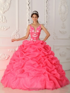 Lovely Watermelon Sweet 16 Dress Straps Satin and Organza Appliques Ball Gown