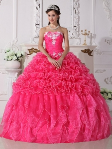Modest Hot Pink Sweet 16 Dress Strapless Organza Embroidery with Beading Ball Gown