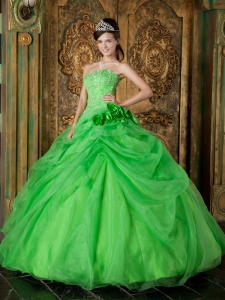 Pretty Spring Green Sweet 16 Dress Strapless Organza Beading Ball Gown