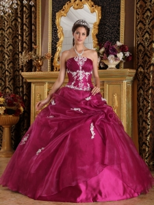 Brand New Fuchsia Sweet 16 Dress Strapless Organza and Satin Appliques Ball Gown
