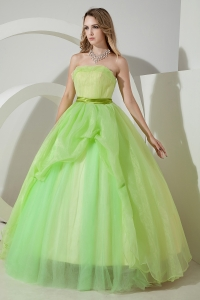 Light Green Sweet 16 Dress / Princess Strapless Floor-length Organza