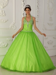 Simple Spring Green Sweet 16 Quinceanera Dress Halter Tulle Beading