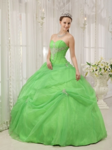 Brand New Spring Green Sweet 16 Dress Sweetheart Organza Appliques Ball Gown