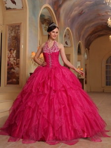 Romantic Hot Pink Sweet 16 Dress Halter Organza Embroidery Ball Gown