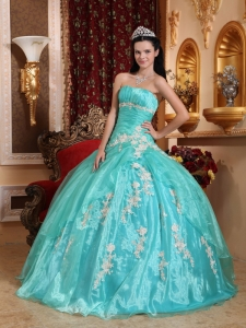 Beautiful Sweet 16 Quinceanera Dress Strapless Organza Appliques Ball Gown