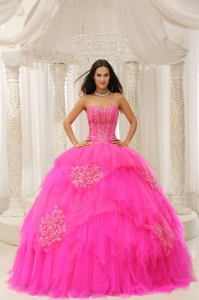 Custom Made Hot Pink Sweetheart Embroidery For Sweet 16 Wear In 2013