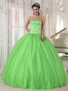 Elegant Spring Green Sweet 16 Dress Strapless Taffeta and Tulle Appliques Ball Gown