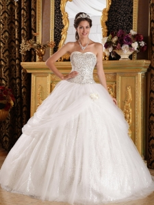 Popular Sweet 16 Quinceanera Dress Sweetheart Organza and Sequined Ball Gown